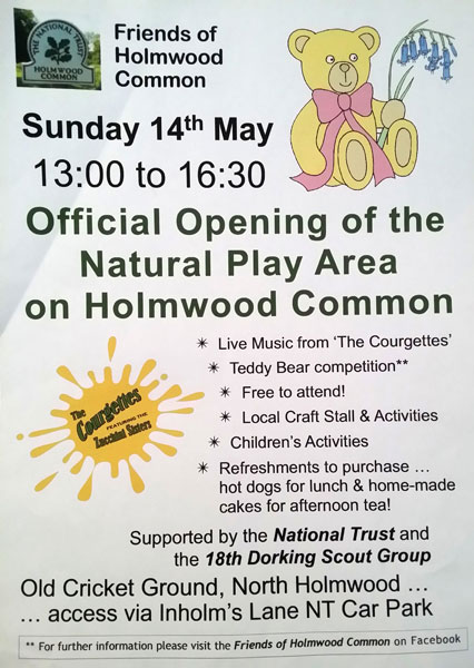 holmwood common poster may 17
